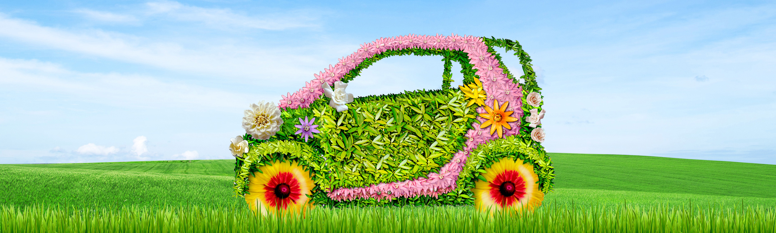 Spring Auto Loans